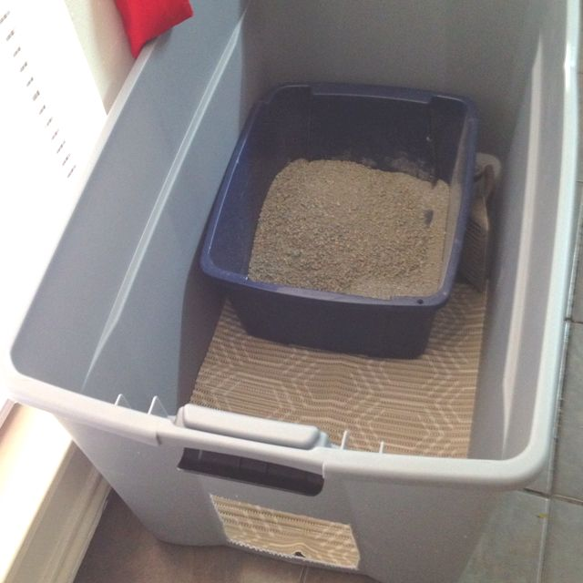 ♥ DIY Cat Stuff ♥  Oh, litter box problems! Try putting the box inside a bin to reduce scattered littler and smell.