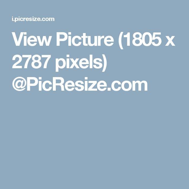View Picture (1805 x 2787 pixels) @PicResize.com