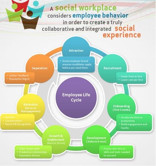 mcdonald s organization life cycle A key success factor of the product lifecycle management (plm) re-birth program at mcdonald's was the decision to establish a clear vision for the solution driving cycle time improvements, productivity benefits, and material cost savings are often within.