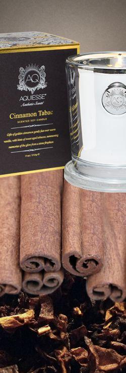 Aquiesse Candle in Cinnamon Tabac Golden Cinnamon, Warm Vanilla & Sweet Aged Tobacco