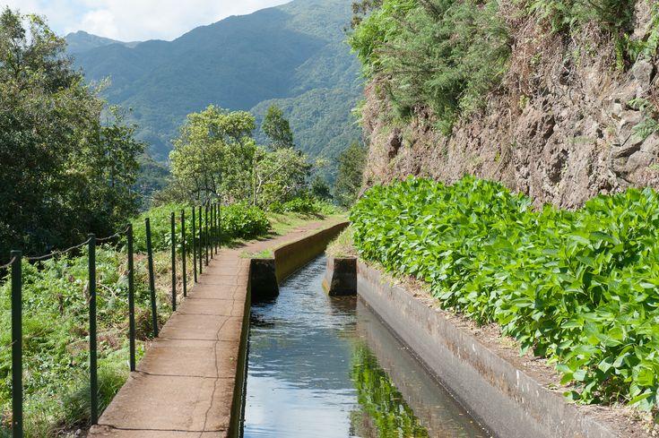 Hiking Levada ribeira da Janela. Madeira - Portugal