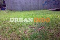 Dijual tanah siap bangun di Mahagony park Graha Bintaro Luas  200 m2   Surat PPJB Lokasi didalam cluster ,ada  club house  Hub : 085287624228 Harga Rp 8,5 jt/m2