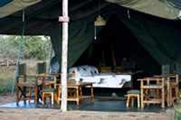 Sentrim Tsavo East- The 20 tents are spread out in a shadowed glade among boskia trees. The camp has the atmosphere of the pioneer camps of long ago while providing the luxury of a permanent camp with modern amenities. The main guest area consists of the reception, lounge area, restaurant and bar. Tsavo East National Park is one of the world's largest game reserves, providing undeveloped wilderness homes to vast numbers of animals with over 500 bird species recorded in the area.