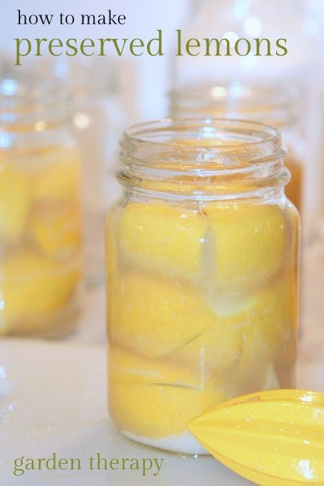 Easy to make preserved lemons add a whole other flavor to chicken or ...