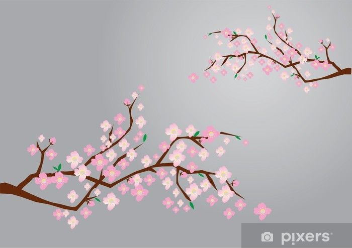 Vector Cherry Blossom Sticker Pixers We Live To Change Cherry Blossom Blossom Cherry Blossom Tree