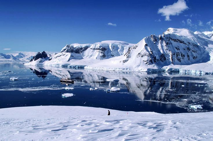 View from Danco Island in Antarctica, with the Ocean Endeavour anchored in the bay | heneedsfood.com