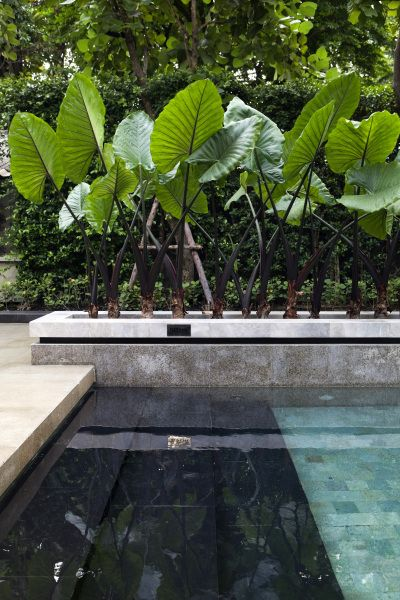 Tropical-chic Design...Exotic plants border this aqua-blue pool with contrasting charcoal steps