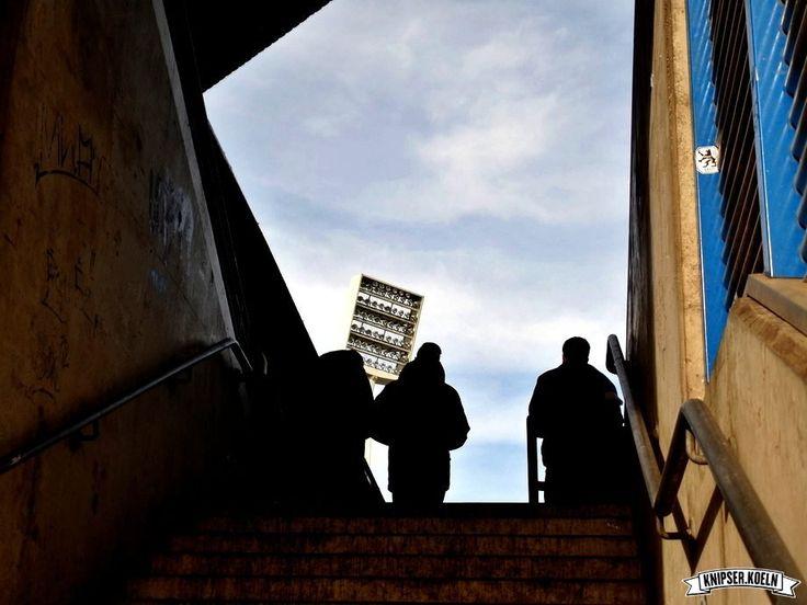 05.02.2017, 13:30 Uhr, 2. Bundesliga, Vonovia Ruhrstadion, 15.294 Zuschauer  VfL Bochum 1:1 (0:0) Karlsruher SC  http://knipser.koeln/?p=4901