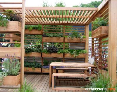 Modern pergola with integrated planters