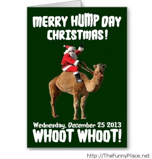 Funny Christmas Pic Quotes: 54 Best Hump Day Images On Pinterest