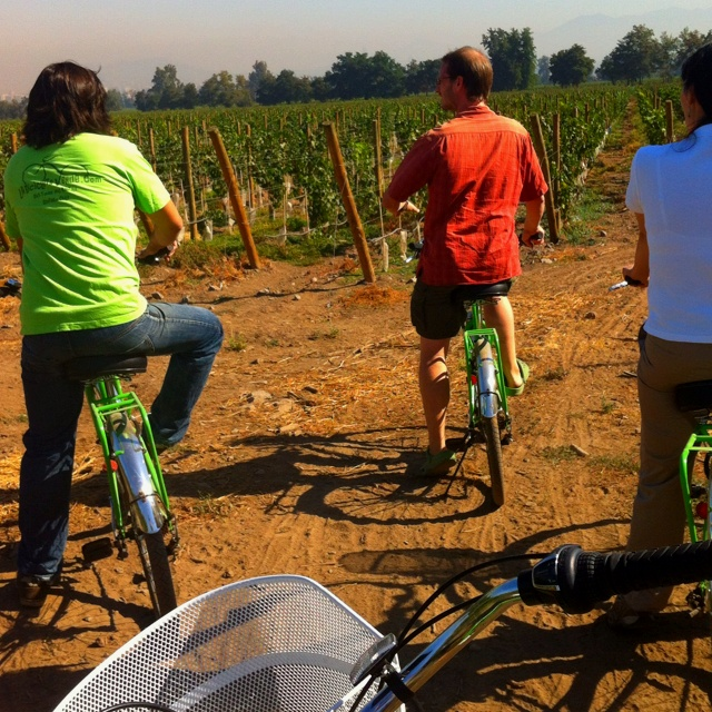 Cousiño Macul Viña. Bike and wine tour with La Bicicleta Verde Tour Company.