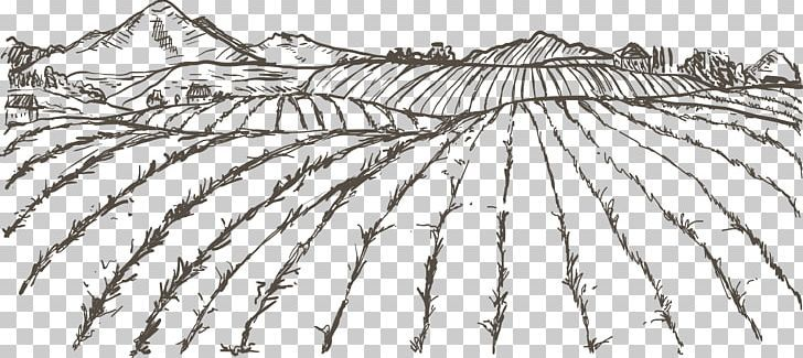 Agriculture Farmer Drawing Png Angle Artwork Black And White Branch Crop Agriculture Drawings Png
