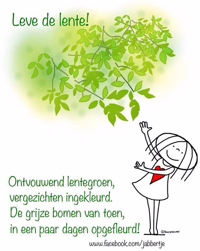 Jabbertje