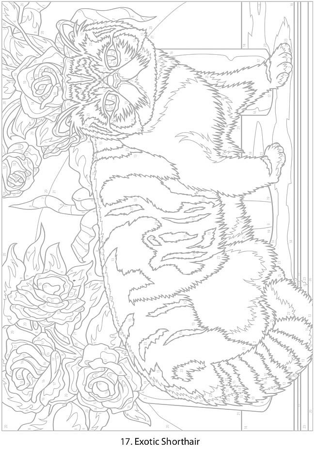 Creative Haven Cats Color By Number Coloring Book By George Toufexis Welcome To Dover Publications Col Cat Coloring Book Cat Coloring Page Cute Coloring Pages
