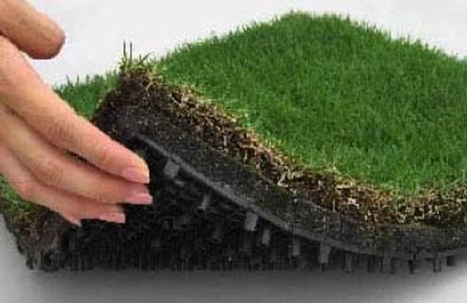 Instant Grass Roof Possible with Turf Tiles