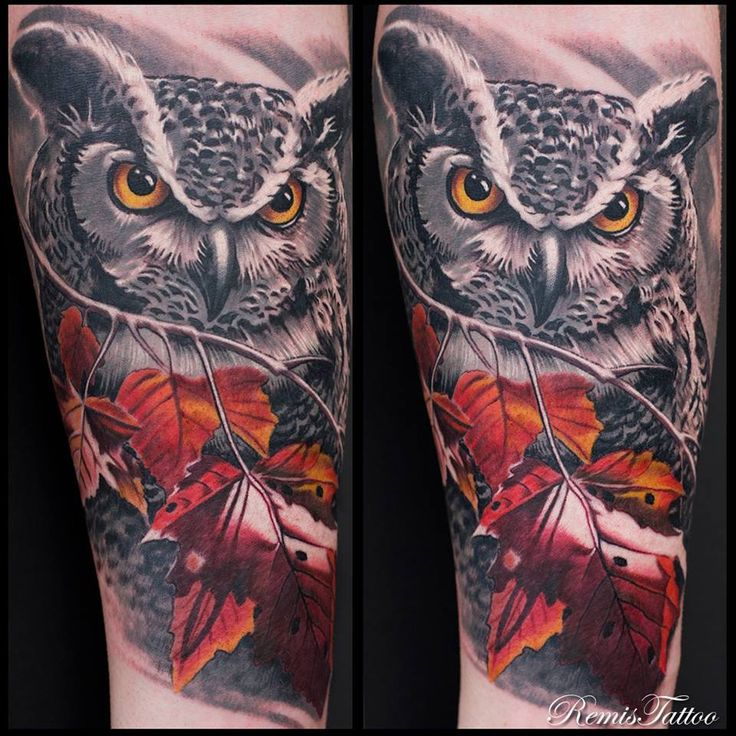 1850 best images about owl tattoos uil tattoos on for Best tattoo shop dublin