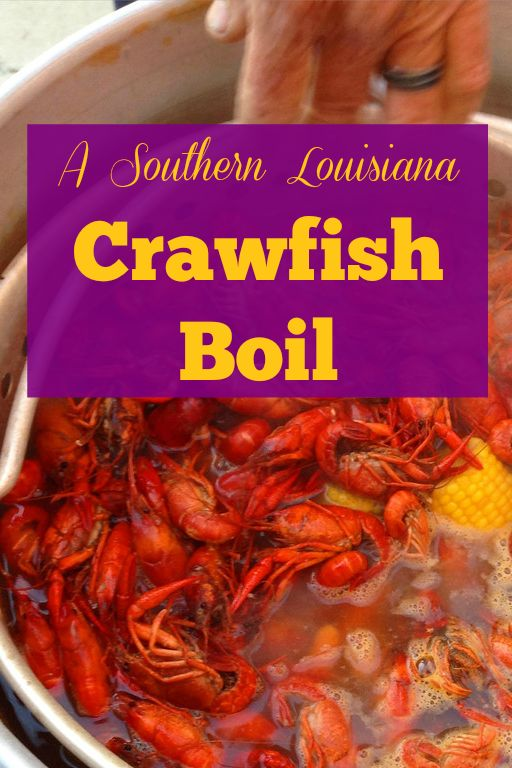Spring means Crawfish season in Louisiana! Learn why crawfish rule Cajun cuisine + pin to save my uncle's traditional crawfish boil recipe.