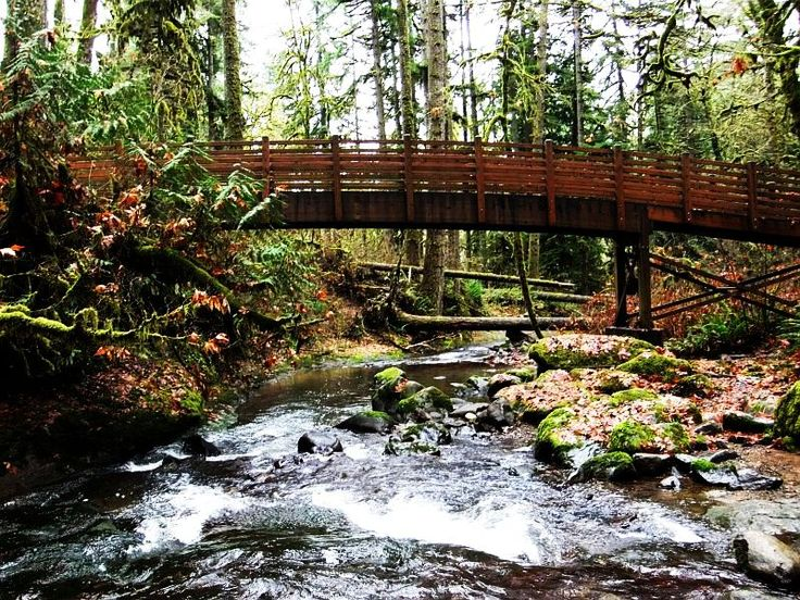 748 best images about Oregon: God\'s Country on Pinterest | Crater ...
