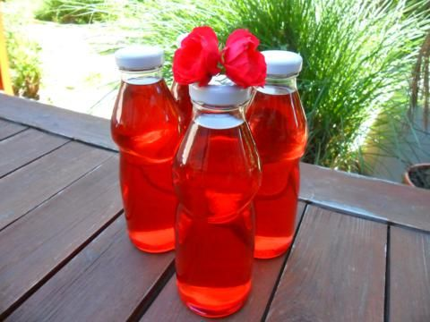 Illatos rózsaszörp - Bio-Ritmus