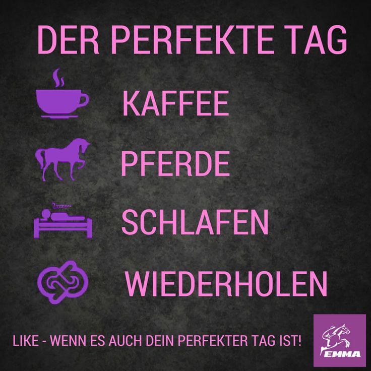 Zusatzfutter für Pferde, Ergänzungsfutter & Pferdepflege. Besuche unseren neuen Shop: www.emma-care.de