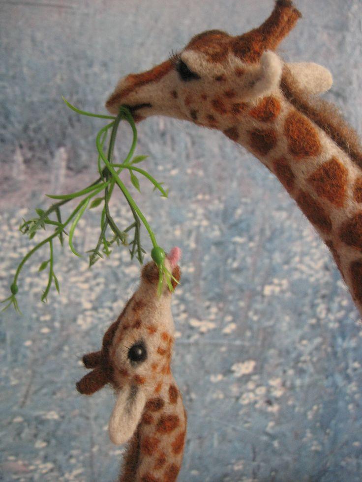 Www Bing Com1 Microsoft Way Redmond: 17 Best Images About Lions,Tigers,Giraffes,Elephants