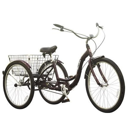 Schwinn® Adult Trike - Sears,ca
