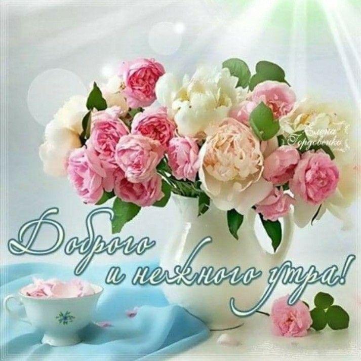 С добрым утром девушке картинки красивые цветы с пожеланиями, надписи