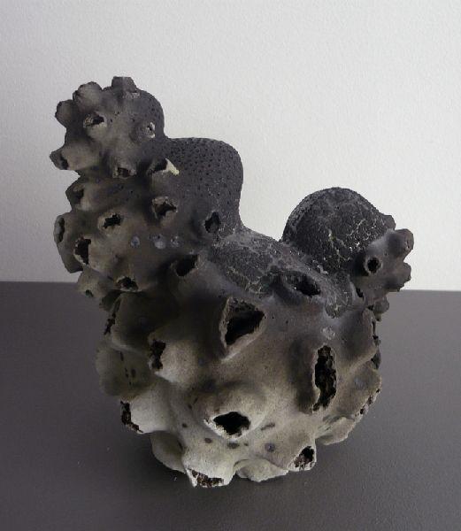 http://www.accro-terre.com/wp-content/gallery/2010-gabrielle-baecile-vues/concretion12.jpg
