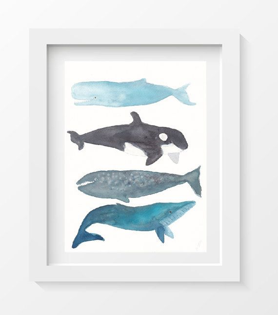 SALE Whale Print Whale Stack Whales Art Watercolor Painting Print  Watercolor Painting Print 5x7 by Littlecatdraw on Etsy https://www.etsy.com/listing/115487380/sale-whale-print-whale-stack-whales-art