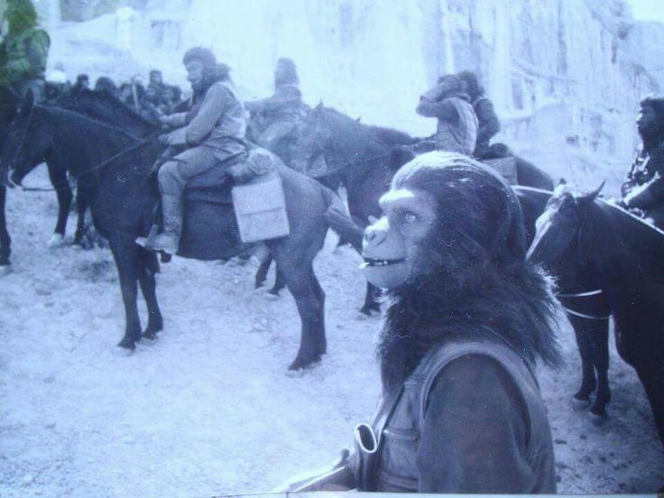 Pin by McRay Studios on Planet of the Apes in 2019 ... James Whitmore Planet Of The Apes