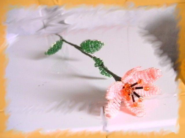 Virág 2.