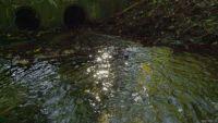 water sun GIF by Living Stills