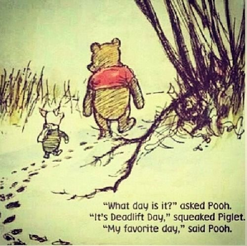 pooh can deadlift 500lbs