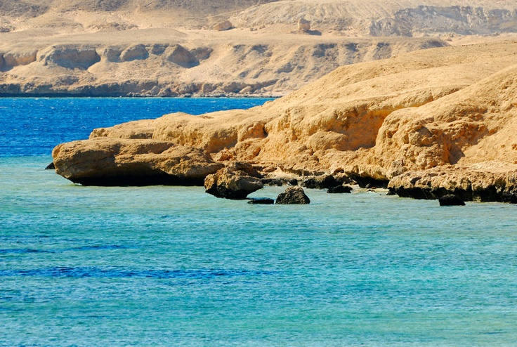 Nabq Bay, Sharm el-Sheikh, Egypt