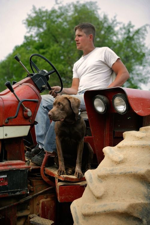 Guy On Tractor : Images about hot guys on tractors pinterest