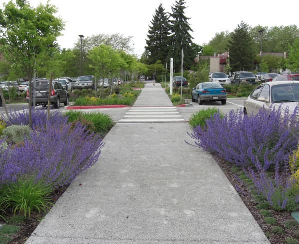 Beautiful stormwater planters and walkway in the parking lot at Olympic College, Bremerton, WA by SvR Design. Click for link to full profile and visit the slowottawa.ca boards >> http://www.pinterest.com/slowottawa/