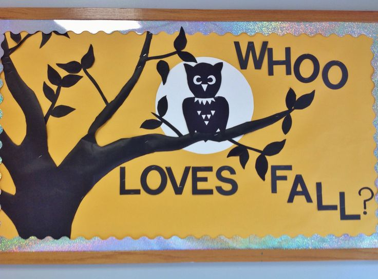 1000 ideas about owl bulletin boards on pinterest