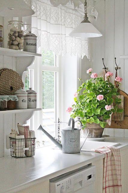Blomstrende pelargoner som koser seg denne sensommeren...og skaper deilig sommerstemning på kjøkkenet. Photo and copyright: Vibeke Design