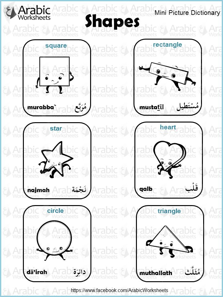 Arabic/English Picture Dictionary- Shapes