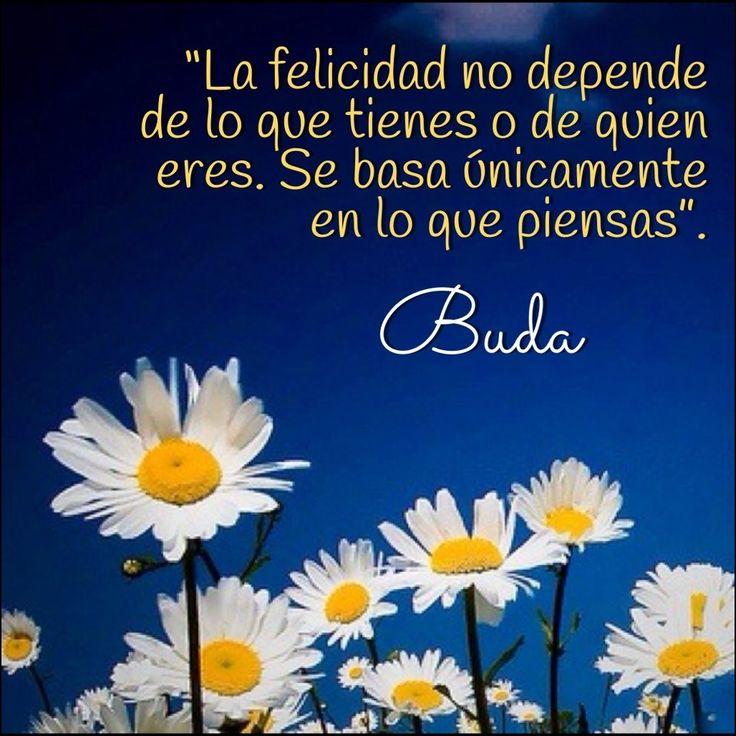 La felicidad no depende de lo que tienes o de quién eres. Se basa únicamente en lo que piensas. Buda