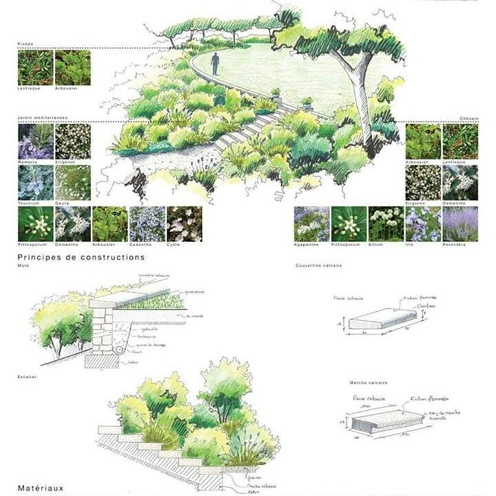 Landscape architecture sketch of garden