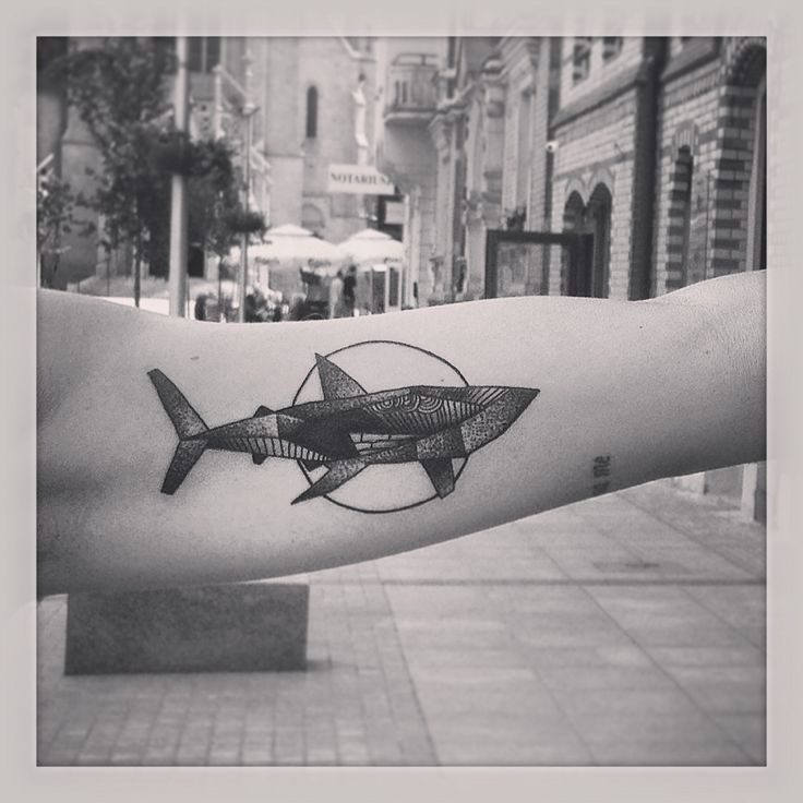 Lule85 chuba ty tattoo katowice shark dotwork