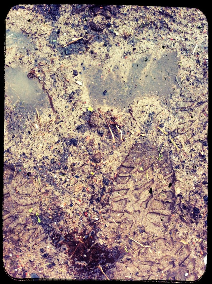 Muddy footprint.