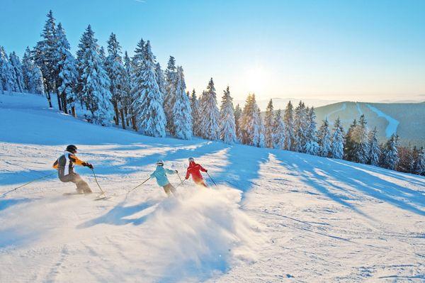 Beim #Skifahren und #Snowboarden im #Mühlviertel den #Weitblick genießen. Weitere Informationen zu #Skiurlaub im Mühlviertel in #Österreich unter www.muehlviertel.at/skifahren - ©Oberösterreich Tourismus/Erber