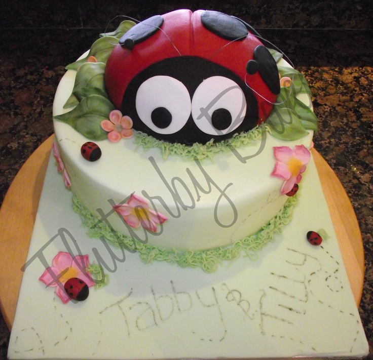 Ladybird cake for joint 1st and 3rd Birthday