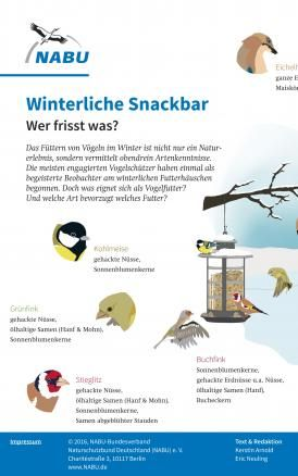Experte Rat Vogel Im Garten Ganzjahrig Futtern Vogel Im Garten Garten Vogel Im Winter