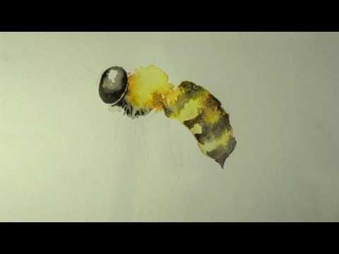 Пчела - YouTube