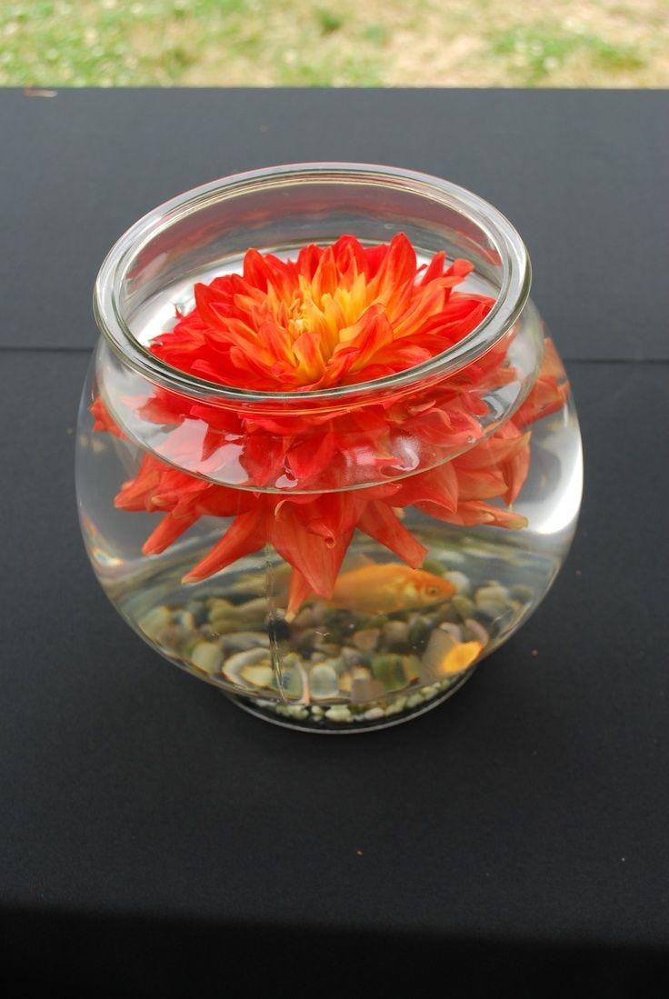 Goldfish centerpiece ideas and dahlia