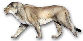 Panthera leo atrox es el nombre científico de una subespecie extinta de león que habitó en el oeste de América durante el Pleistoceno, extendiéndose su área de distribución desde Alaska hasta el estado de Chiapas en México.1 Existe la creencia que su distribución abarcó hasta el sur de Perú e incluso el norte de Chile, sin embargo los restos encontrados en estas regiones corresponden en realidad a jaguares de gran tamaño.2