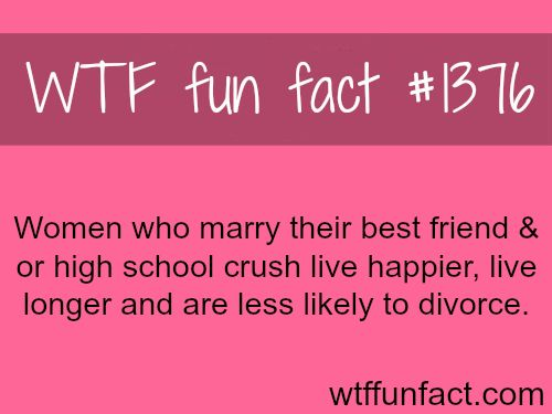 Why you should marry your best friend or high school crush  WTF FUN FACTS HOME / SEE tagged/love and relationship FACTS